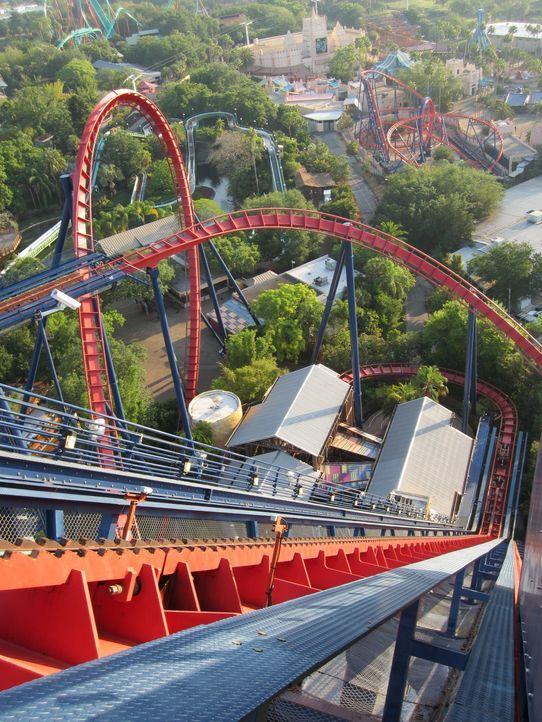 """Werden sich die Fans für """"SheiKra"""" im Busch Gardens Tampa Freizeitpark in Florida entscheiden? - Bildquelle: 2012, The Travel Channel, L.L.C. All rights Reserved."""