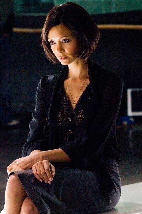 Eine gewiefte Buchhalterin: Stella (Thandie Newton) wickelt alle Männer um den Finger ... - Bildquelle: Warner Bros.