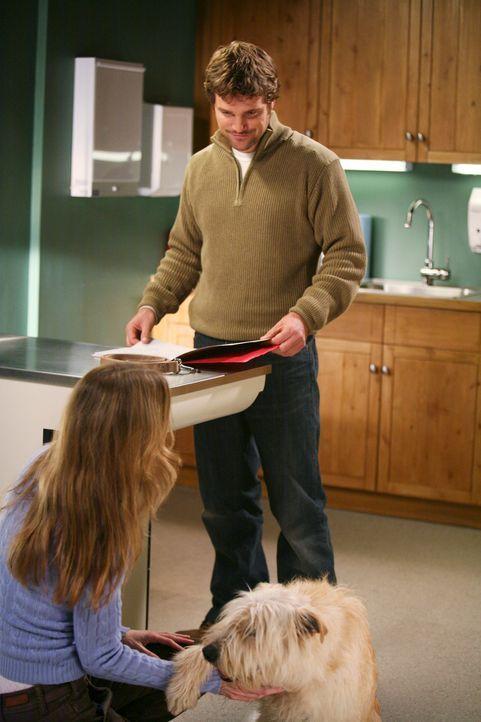 Derek hat Probleme, denn zu Hause mit Addison läuft es nicht gut im Bett. Doc, dem Hund, geht es schlecht, und Meredith (Ellen Pompeo, l.) ist verdä... - Bildquelle: Touchstone Television