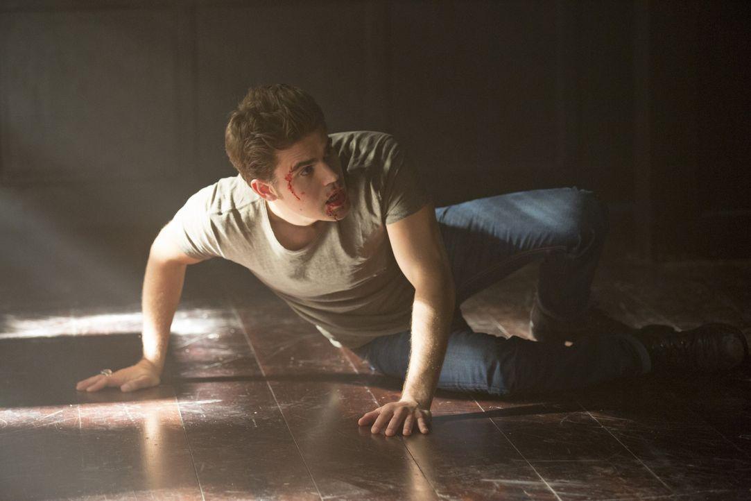 Stefan gerät in eine Schlägerei - Bildquelle: Warner Bros. Entertainment Inc.