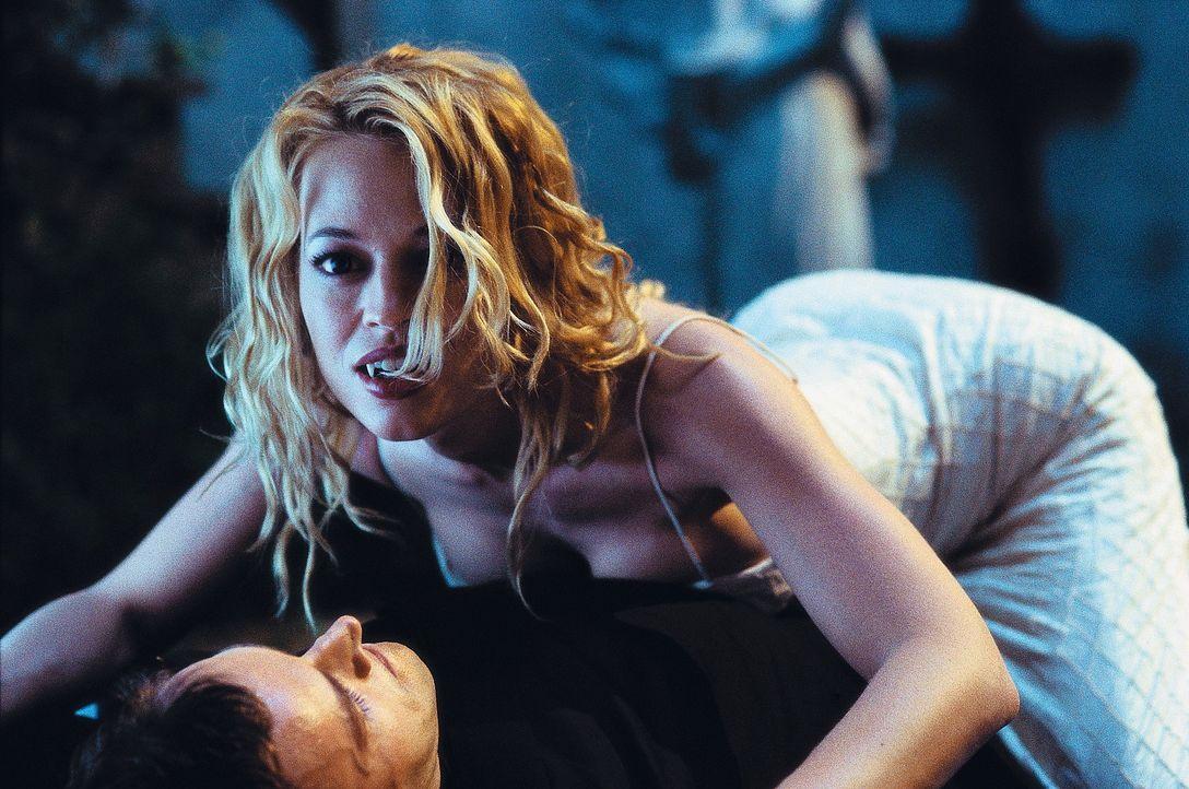 Valerie (Jeri Lynn Ryan) begeht einen folgenschweren Fehler: Sie kommt Dracula gefährlich nahe ... - Bildquelle: Dimension Films