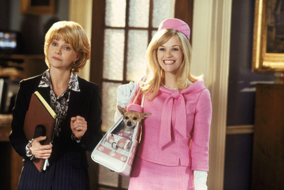 Als Anwältin Elle (Reese Witherspoon, r.) herausfindet, dass ausgerechnet ein Mandant der Kanzlei die Verwandten ihres geliebten Hündchens Brutus fü... - Bildquelle: Metro-Goldwyn-Mayer (MGM)