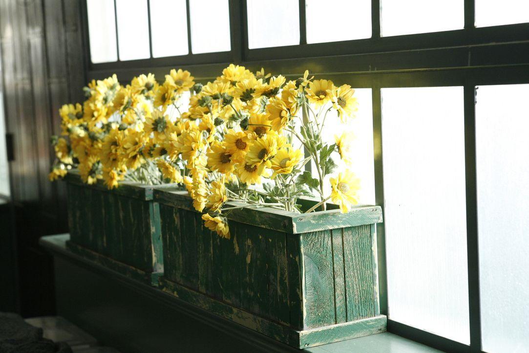 Mittels von Gerüchen wie der von Blumen sollen Erinnerungen freigesetzt werden. Der Mann, der hinter dieses Geheimnis gekommen ist, soll allerdings... - Bildquelle: Warner Brothers
