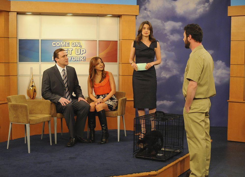 Marshall (Jason Segel, l.) und Lily (Alyson Hannigan, 2.v.l.) sind nach dem Überfall auf Marshall bei Robin (Cobie Smulders, 2.v.r.) in der Sendung... - Bildquelle: 20th Century Fox International Television