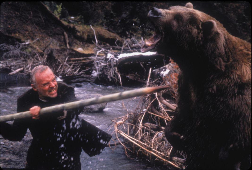 Der schwerreiche Geschäftsmann Charles Morse (Anthony Hopkins) muss nach einem Flugzeugabsturz in der Wildnis Alaskas um sein Leben kämpfen - doch w... - Bildquelle: kabel eins