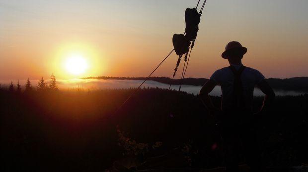 Es ist wohl der härteste Job der USA - Holzfäller im Pazifischen Nordwesten A...