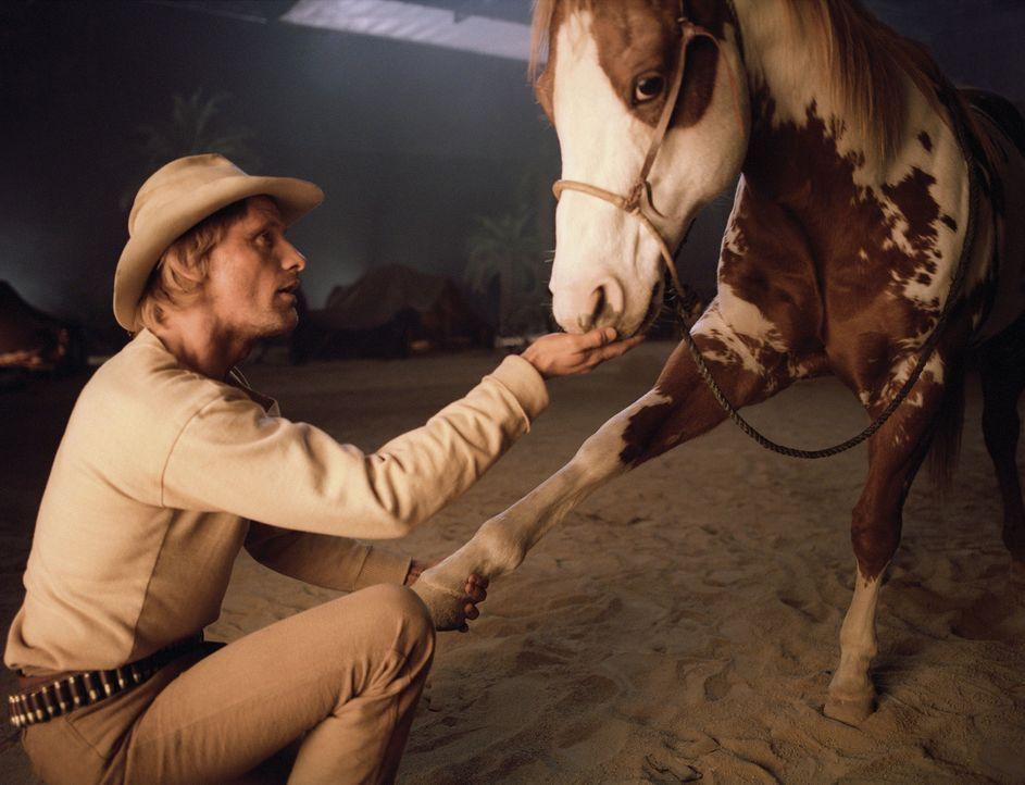 Der Wilde Westen, 1890: Der Kurierreiter Frank Hopkins (Viggo Mortensen) und sein Pferd Hidalgo gehen gemeinsam durch dick und dünn. Ihr Ruf ist so... - Bildquelle: Walt Disney Pictures. All rights reserved