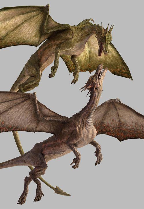Immer wieder kommt es zu harten Rivalitätskämpfen unter den Drachen. ...
