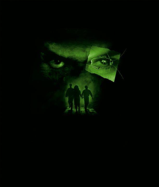 Die Judas-Kakerlaken sind zurück - noch grausamer, noch bösartiger und noch schrecklicher als je zuvor ... - Bildquelle: Dimension Films