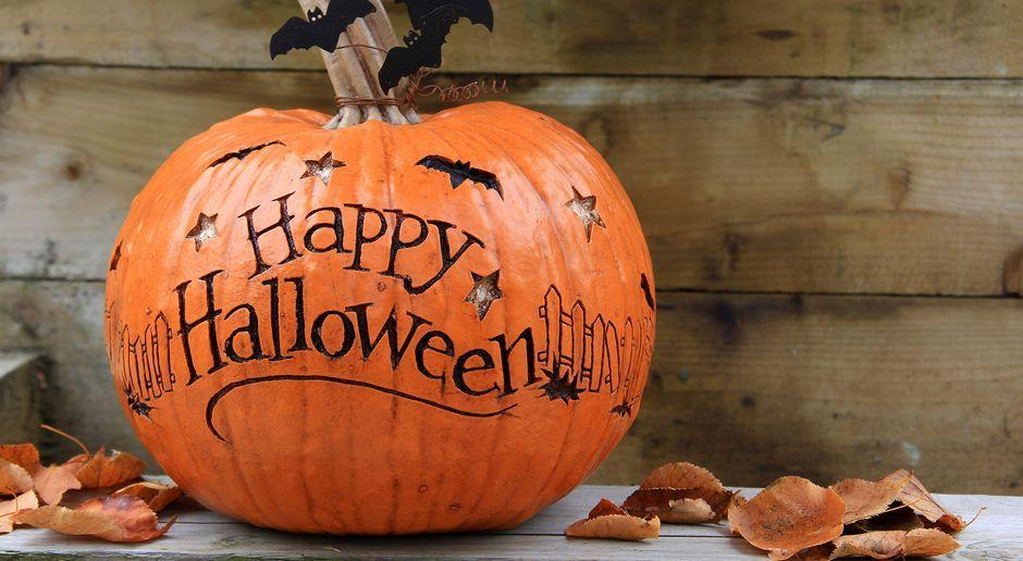 Halloween Deko Selber Machen   SAT.1 Ratgeber