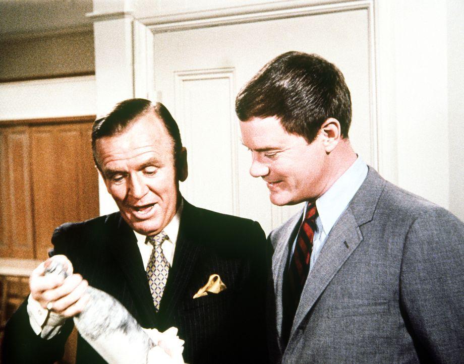 Dr. Bellows (Hayden Rorke, l.) freut sich über das Gastgeschenk, das Tony (Larry Hagman, r.) mitgebracht hat, nichtahnend, dass es sich um keinen no...