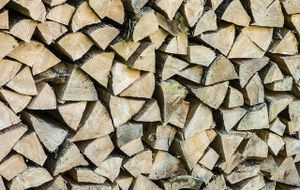 holz-brennholz