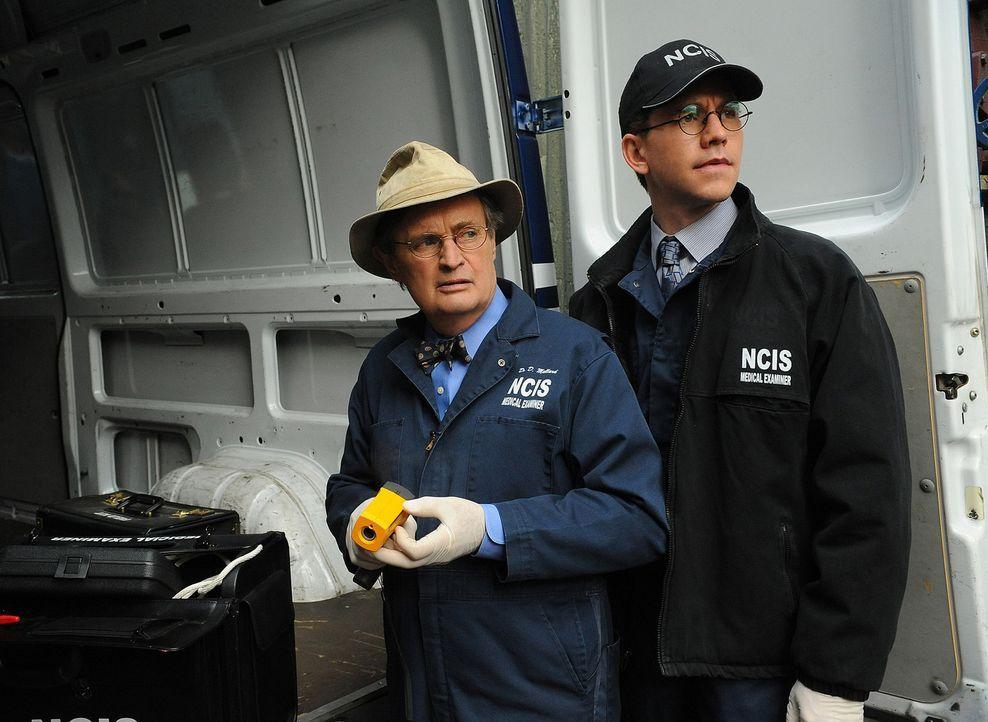 Ermitteln in einem neuen Fall: Ducky (David McCallum, l.) und Jimmy Palmer (Brian Dietzen, r.) ... - Bildquelle: CBS Television