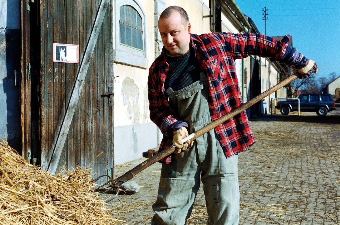 Fritz Kunz (Martin Weinek) betätigt sich undercover als Stallbursche auf dem Reiterhof von Hermine Latzki. - Bildquelle: Ali Schafler Sat.1