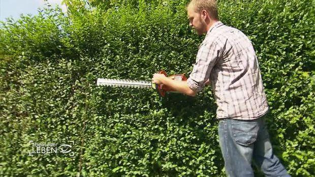 Ratgeber video gartenarbeit leicht gemacht sat 1 - Gartengestaltung leicht gemacht ...