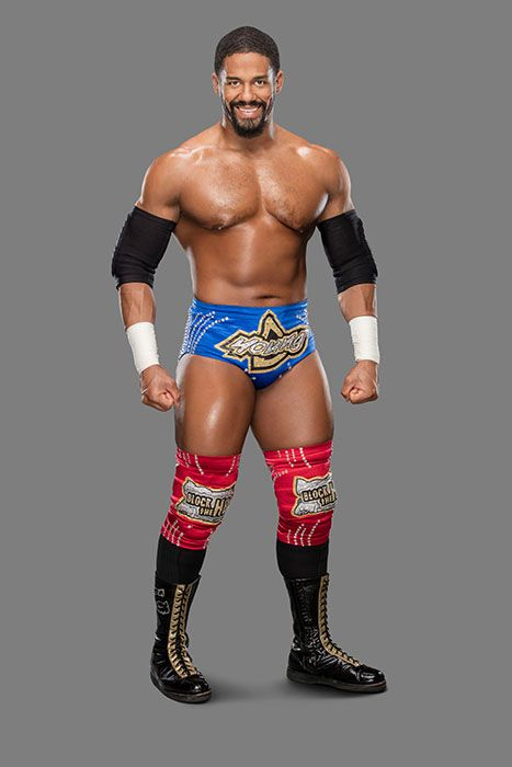 darren-YOUNG_10242016_042 - Bildquelle: 2016 WWE, Inc. All Rights Reserved.