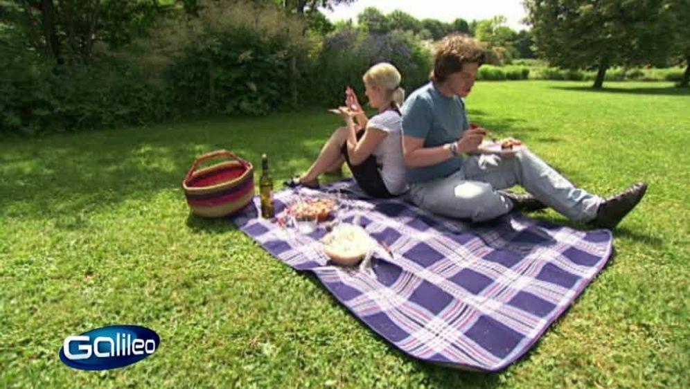 Perfektes Picknick Food