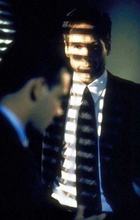Mulder (David Duchovny, r.) wird ausdrücklich von den Ermittlungen ausgeschlossen ... - Bildquelle: TM +   2000 Twentieth Century Fox Film Corporation. All Rights Reserved.