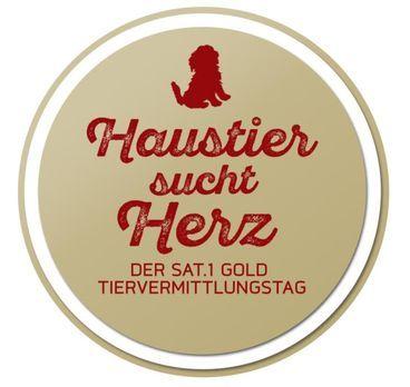 Haustier sucht Herz - Der SAT.1 Gold Tiervermittlungstag - Haustier sucht Her...