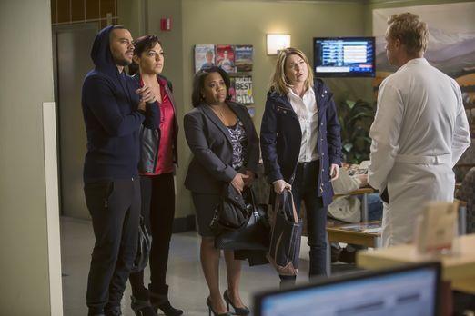 Grey's Anatomy - Owen (Kevin McKidd, r.) hat einen ganz besonderen Einsatz fü...
