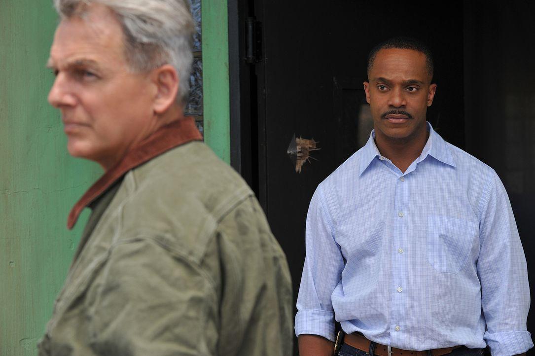 Der neue NCIS Direktor Leon Vance (Rocky Carroll, r.) ist von Gibbs (Mark Harmon, l.) und seinem Team so genervt, dass er dies auflöst ... - Bildquelle: CBS Television