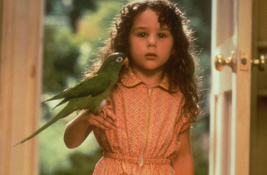 Um ihrem besten Freund, dem Papagei Paulie, möglichst nah zu kommen, startet Marie (Hallie Kate Eisenberg) einen Flugversuch, der natürlich fehlschl... - Bildquelle: DreamWorks