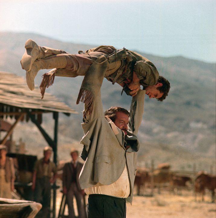 Gangster Hutch Bessy  (Bud Spencer, unten) hat alle Hände voll zu tun .. - Bildquelle: Paramount Pictures