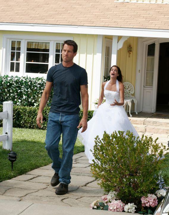 Als Mike (James Denton, l.) erfährt, dass Susan (Teri Hatcher, r.) Zach nach Utah geschickt hat, ist ihr Traum von einer Hochzeit in Weiß mit Mike a... - Bildquelle: 2005 Touchstone Television  All Rights Reserved