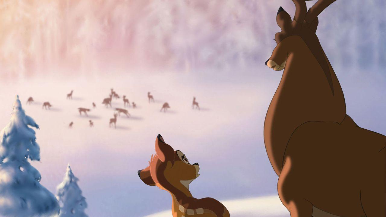 Bambi (l.) versucht sich nach dem Tod der Mutter den Respekt seines Vaters (r.) zu verschaffen, doch wird es ihm gelingen? - Bildquelle: Disney  All rights reserved