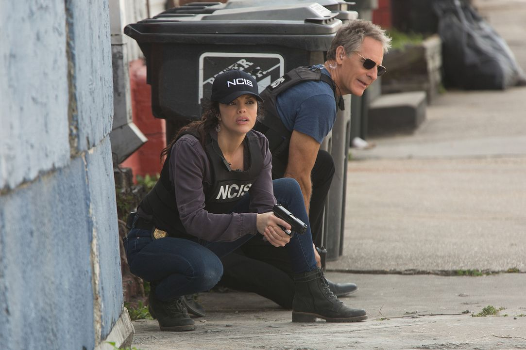 Als Tammys (Vanessa Ferlito, l.) krimineller Ex plötzlich wieder in New Orleans auftaucht, steht NCIS- Boss Pride (Scott Bakula, r.) vor einer echte... - Bildquelle: Sam Lothridge 2016 CBS Broadcasting, Inc. All Rights Reserved