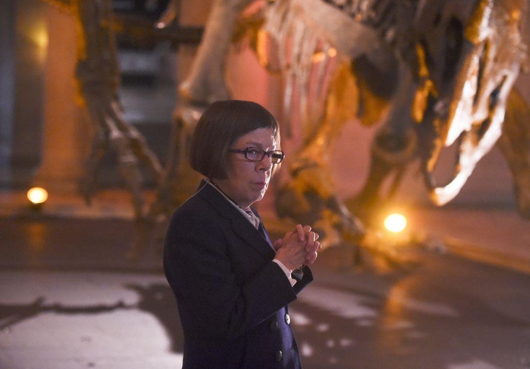 Wird vom Untersuchungsausschuss in die Mangel genommen: Hetty (Linda Hunt) ... - Bildquelle: 2014 CBS Broadcasting, Inc. All Rights Reserved.