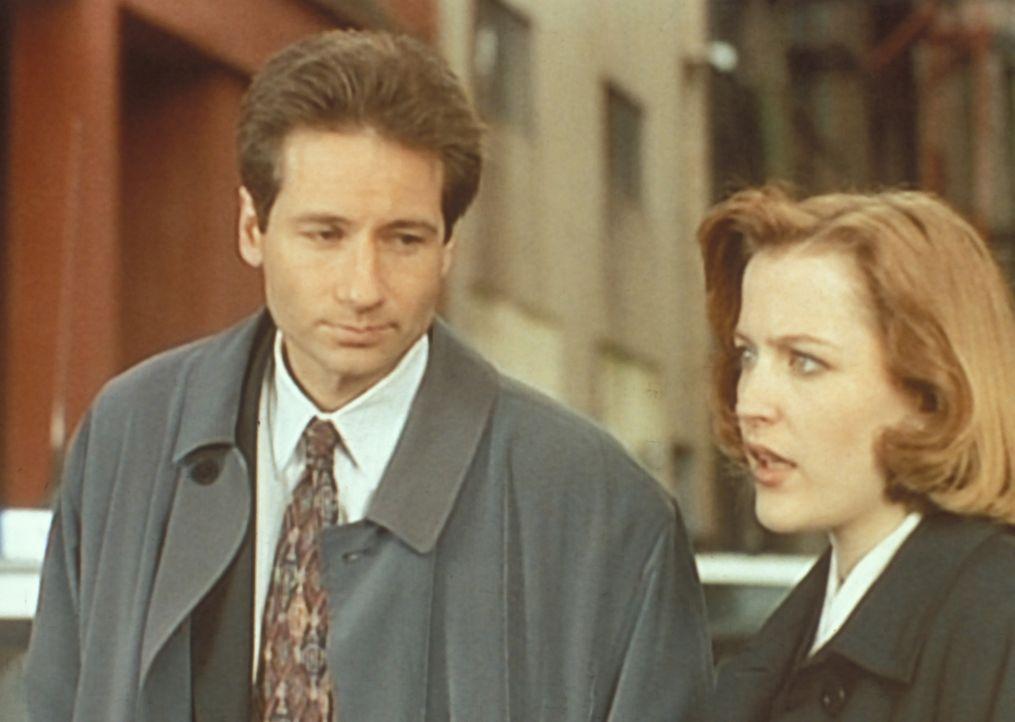 Eine ehemalige Studentin von Scully (Gillian Anderson, r.) bittet sie und Mulder (David Duchovny, l.) bei einer Reihe von Vermisstenfällen um Hilfe... - Bildquelle: TM +   Twentieth Century Fox Film Corporation. All Rights Reserved.
