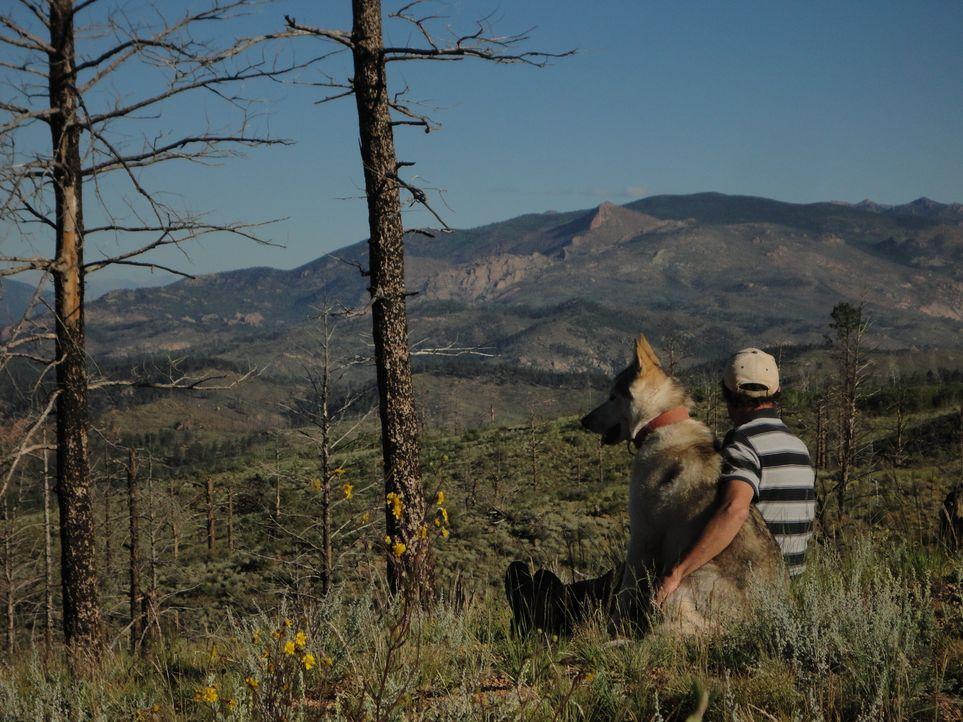 Rich Frettero und sein Hund lieben das, was sie tun, und die Umgebung von Lake George scheint eine wahre Schatztruhe zu sein ... - Bildquelle: High Noon Entertainment 2014