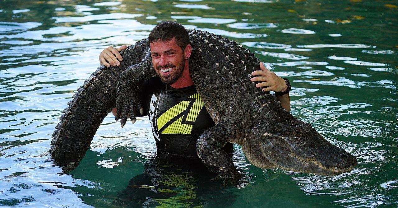 Ricky macht im Sunshine State Bekanntschaft mit einem Alligator ...