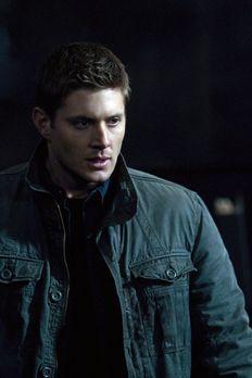 Supernatural - Dean (Jensen Ackles) wusste es ja schon immer, Familie macht n...