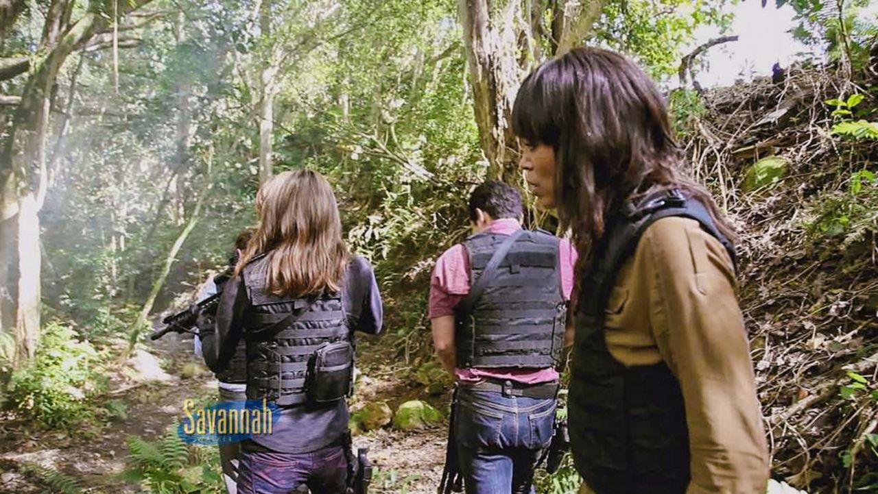 Talkshowmoderatorin Savannah Walker (Aisha Tyler, r.) und ihre Crew begleiten einen Tag lang die Five-0-Crew ... - Bildquelle: 2013 CBS Broadcasting, Inc. All Rights Reserved.