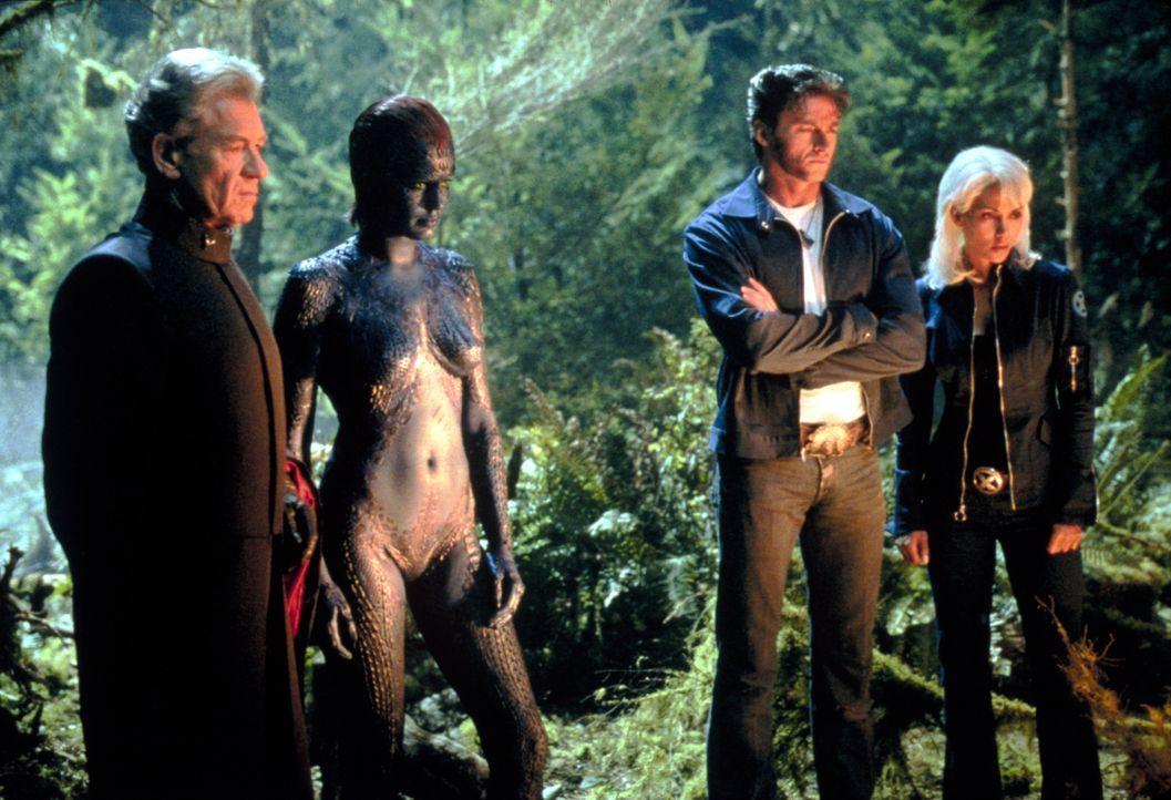 Logan (Hugh Jackman, 2.v.r.) und Storm (Halle Berry, r.) müssen ausgerechnet mit Magneto (Ian McKellen, l.) und Mystique (Rebecca Romijn, 2.v.l.) zu... - Bildquelle: 20th Century Fox International Television