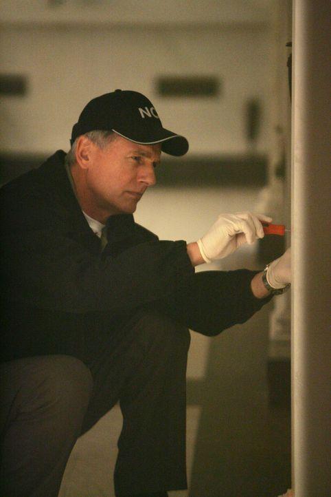 Auf der Suche nach Hinweisen: Gibbs (Mark Harmon) ... - Bildquelle: CBS Television