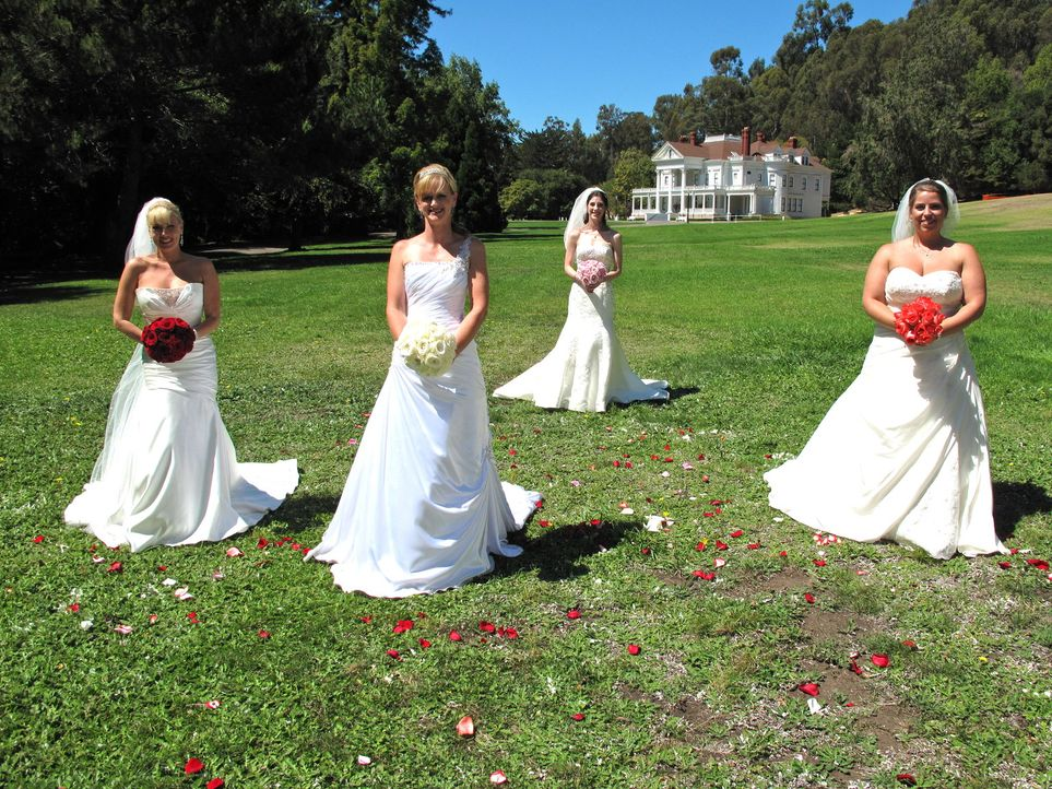Kämpfen um den Titel und eine atemberaubende Hochzeitsreise: Julie (l.), Stacey (2.v.l.), Natalie (2.v.r.) und Brittany (r.) ... - Bildquelle: Richard Vagg DCL