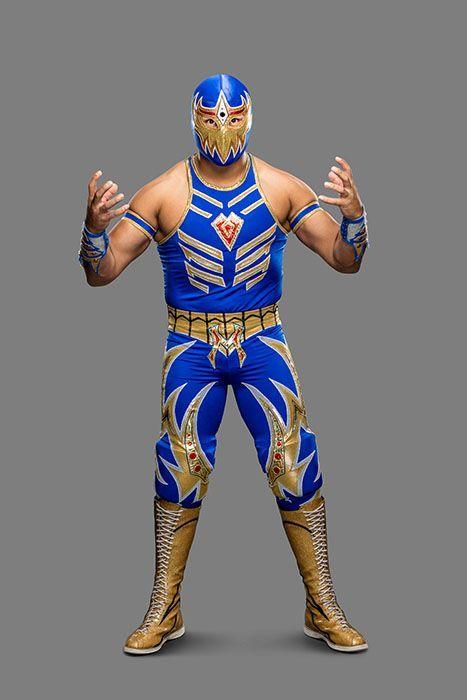 Gran_Metalik_09192016rf_020 - Bildquelle: 2016 WWE, Inc. All Rights Reserved.