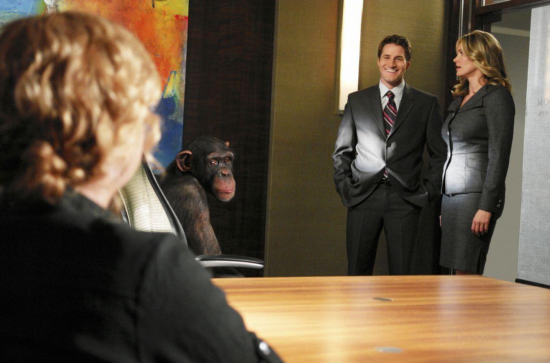 Taylor (Natasha Henstridge, r.) kann es kaum fassen: Matt (Sam Jaeger, l.) bittet sie darum, den Fall von Dr. Leila Maxford (Jennifer Aspen, vorne)... - Bildquelle: Disney - ABC International Television