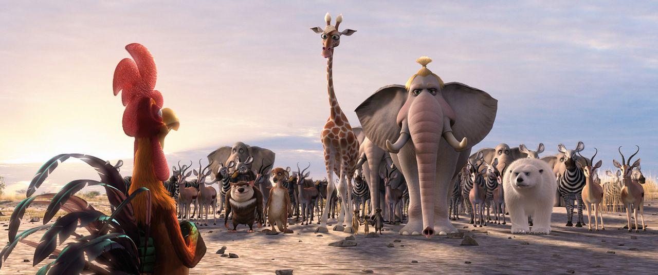 Charles (l.) weiß: Nur gemeinsam können sie es schaffen! Alles Tiere der Savanne und ihre Gäste aus aller Welt tuen sich zusammen, um ihr Wasser... - Bildquelle: Constantin Film Verleih GmbH