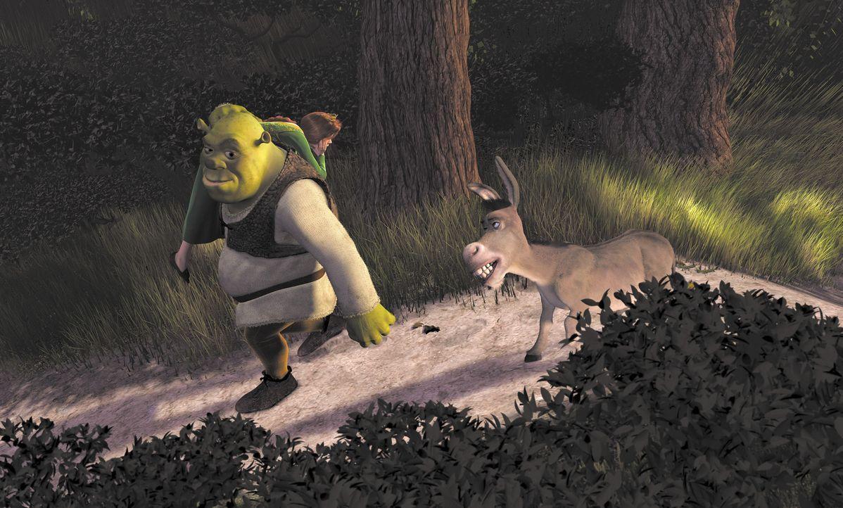 Mit ihrem zickigen Verhalten kommt Prinzessin Fiona (l.) bei Shrek (M.) nicht weit. Er will sie und den sprechenden Esel (r.) so schnell wie möglic... - Bildquelle: TM &   2001 DreamWorks L.L.C.