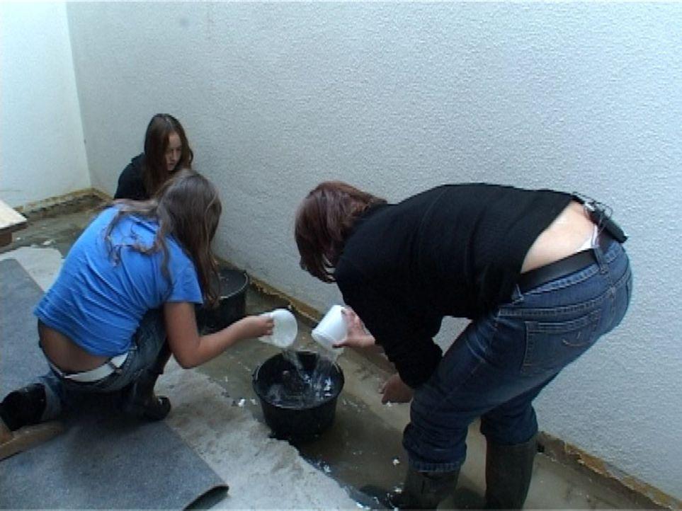 Wenn Gutachter Ubbelohde zu seinen Klienten kommt, sieht er öfter solche Schäden wie bei Familie Ledermann - Wasser im Keller. - Bildquelle: Sat.1