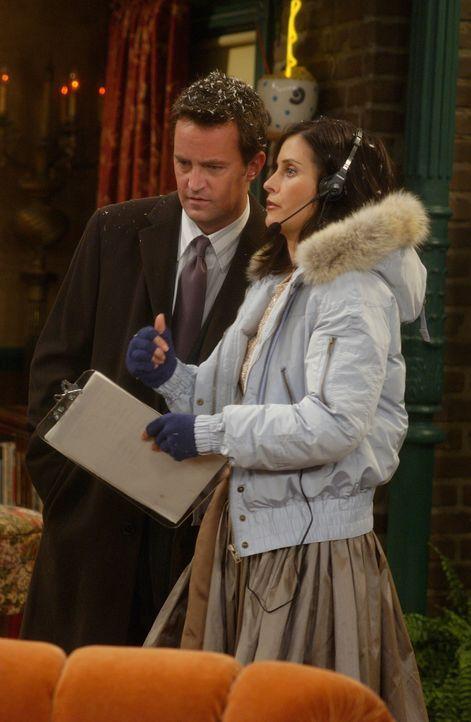 Monica (Courteney Cox, r.) ist Phoebes Hochzeitsplanerin und geht damit Chandler (Matthew Perry, l.) und den anderen tierisch auf die Nerven ... - Bildquelle: 2003 Warner Brothers International Television