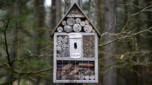 insektenhotel selber bauen bauanleitung und mehr sat 1. Black Bedroom Furniture Sets. Home Design Ideas