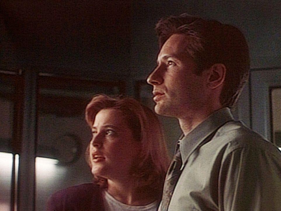 Scully (Gillian Anderson, l.) und Mulder (David Duchovny, r.) sind gespannt, ob der zum Tode verurteilte Mörder einen neuen Entführungsfall inszen... - Bildquelle: TM +   Twentieth Century Fox Film Corporation. All Rights Reserved.