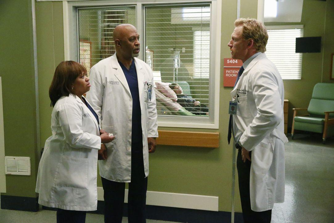 Nachdem Tod von Derek machen sich Owen (Kevin McKidd, r.), Richard (James Pickens, Jr., 2.v.l.) und Miranda (Chandra Wilson, l.) große Sorgen um Mer... - Bildquelle: ABC Studios