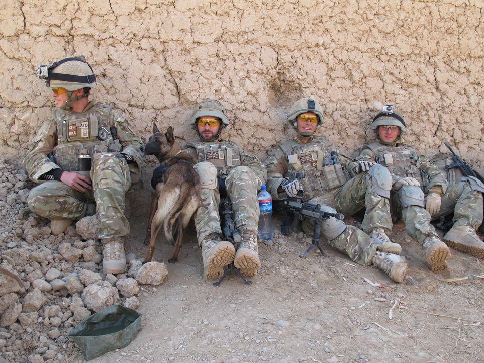 """Jeder Einsatz kann sie das Leben kosten! """"Bomb Squad"""" begleitet die Arbeit von Bombenentschärfungsteams in Afghanistan: (v.l.n.r.) Adam, Hund Dazz,... - Bildquelle: Sara Hardy BBC"""