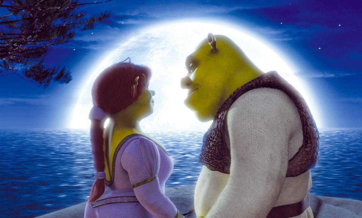 Die Jungvermählten Shrek, l. und Fiona, r. ahnen noch nicht, dass der Besuch bei Fionas Eltern sie in arge Bedrängnis bringen wird ... - Bildquelle: DreamWorks SKG